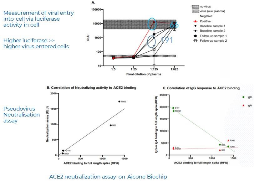 ACE2 Pseudovirus